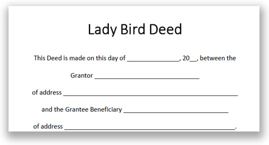 Blank example of a Michigan legal document titled Lady Bird Deed